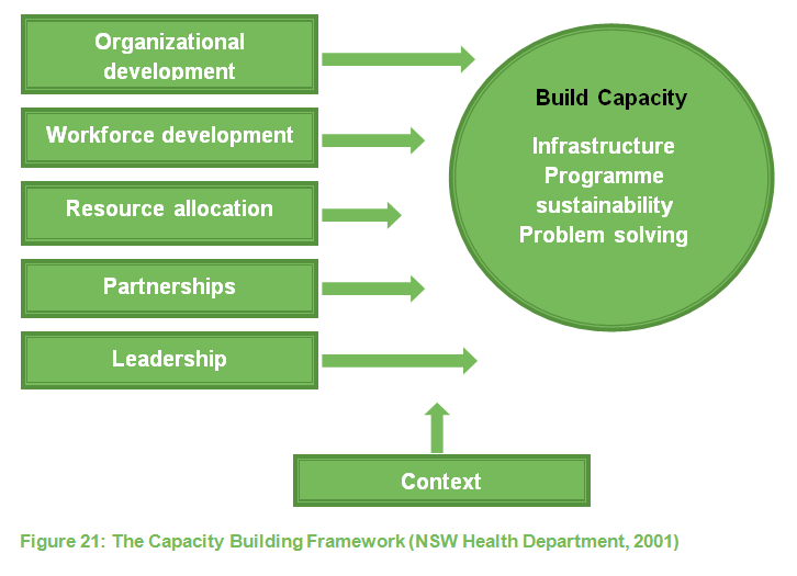 Capacity Building Framework 1 Nsw 2001 Health Equity 2020